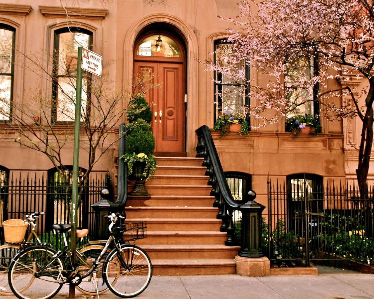 Emilialua for Beautiful apartments in nyc