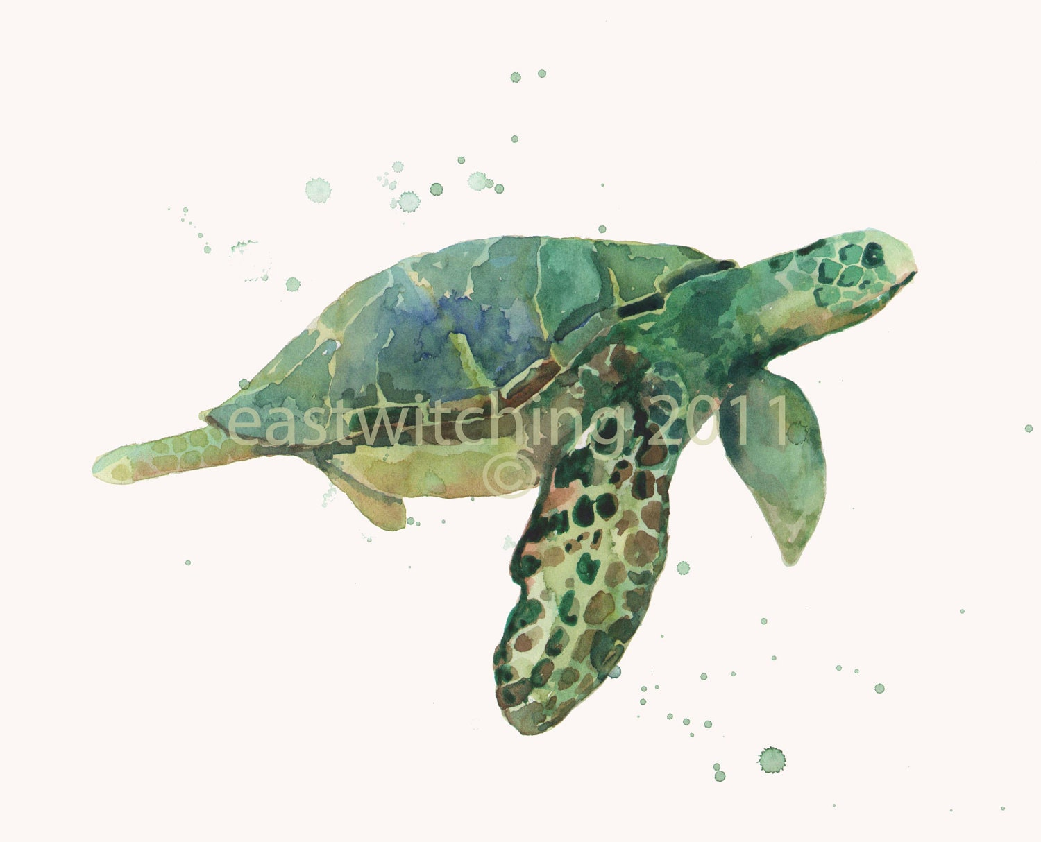 Sea turtle watercolor painting for Turtle fish paint